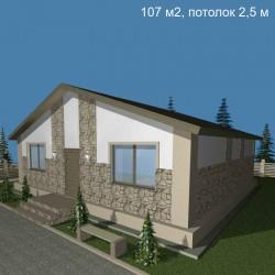 Дом свободной планировки 107 м2, потолок 2,5-Э10